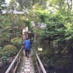 箱根湯本 玉庭 中庭