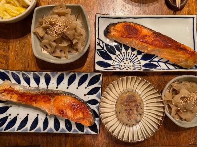 ふるなび 波佐見焼(はさみやき)長焼皿